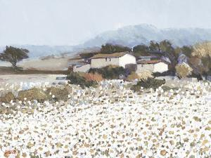 Tranquil Farm Near Bini by Hazel Barker