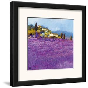 Wild Lavender, Provence by Hazel Barker