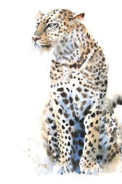 Watching Leopard by Hazel Soan