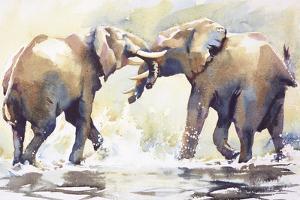 Water Fight by Hazel Soan