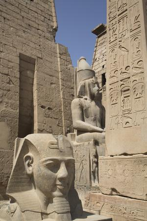 https://imgc.allpostersimages.com/img/posters/head-of-ramses-ii-in-foreground-and-colosssus-of-ramses-ii-behind_u-L-PWFSEO0.jpg?p=0
