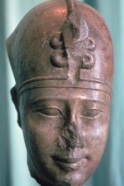 Head of the Pharaoh Teos, 4th Century Bc