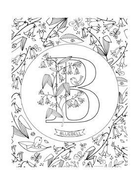 B is for Bluebell by Heather Rosas