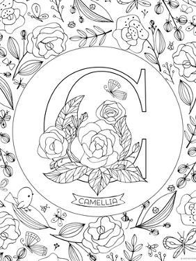 C is for Camellia by Heather Rosas