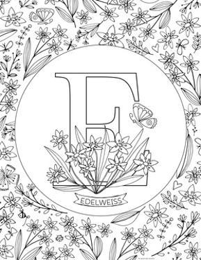 E is for Edelweiss by Heather Rosas
