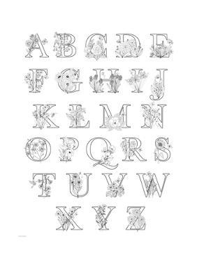 Floral Alphabet A to Z by Heather Rosas