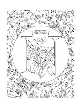 N is for Narcissus by Heather Rosas