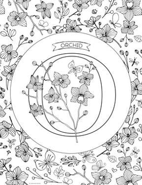 O is for Orchid by Heather Rosas