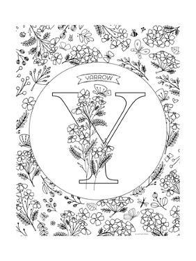 Y is for Yarrow by Heather Rosas