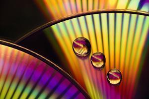 6402_Color trio by Heidi Westum