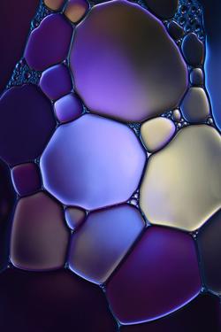 7691_Shapes in purple by Heidi Westum