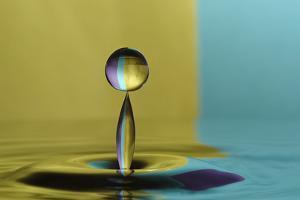 Golden Balance by Heidi Westum