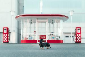 The Dog in the Gas Station by Heike Willers