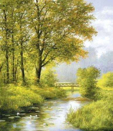 Dreamy Creek II