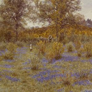 Bluebell Copse, 1889 by Helen Allingham