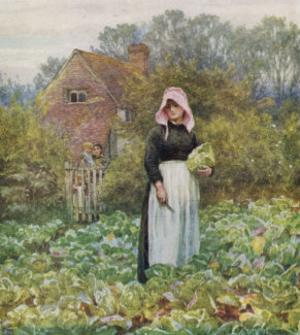 Picking Vegetables in an English Vegetable Garden by Helen Allingham