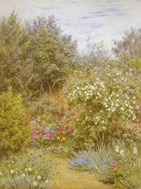 Roses in a Surrey Garden by Helen Allingham