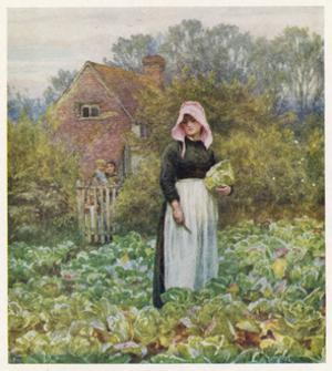 Social, Cabbage Cutting by Helen Allingham