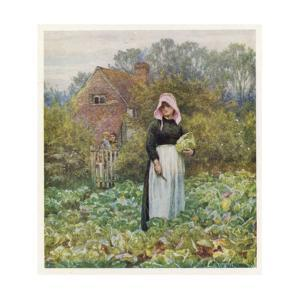Woman Cuts Cabbages by Helen Allingham