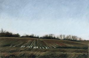 Landscape in South Tennessee, c.1998 by Helen J^ Vaughn
