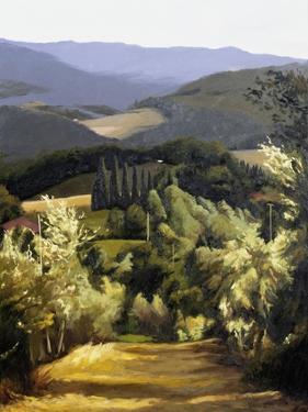 Path Near the Villa by Helen J^ Vaughn