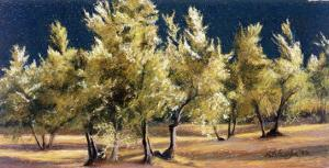 Study of Olive Trees, no.1 by Helen J^ Vaughn