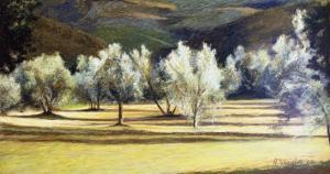 Study of Olive Trees, no.2 by Helen J^ Vaughn