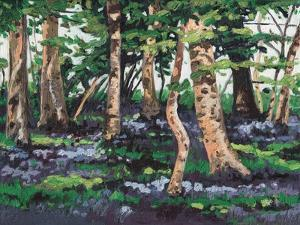 Bluebell Wood, 2009, by Helen White