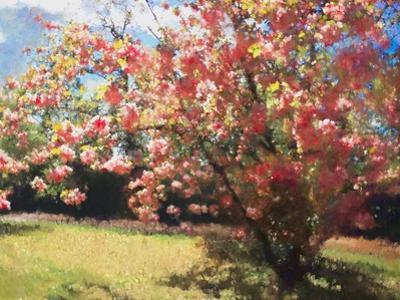 Cherry Blossom, 2018 by Helen White