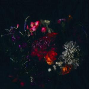 Dark Floral  2019  (mixed media) by Helen White