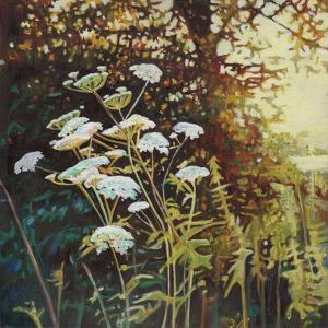 Golden Hedgerows II, 2013 by Helen White