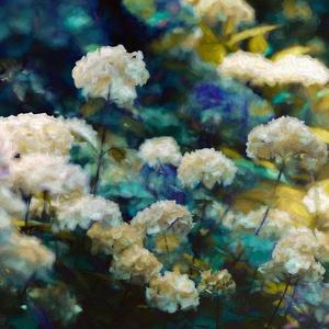Heavenly Hydrangeas  2020  (mixed media) by Helen White