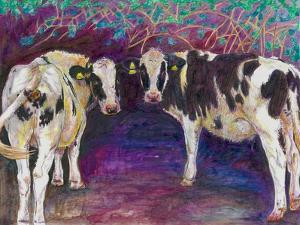 Sheltering cows, 2011, by Helen White