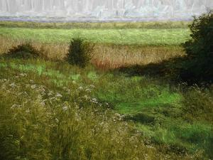 Summer Meadow, 2019, painting by Helen White