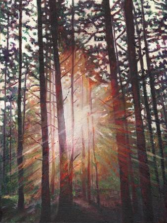 Sunburst, 2010
