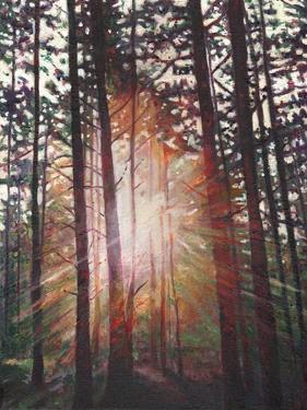Sunburst, 2010 by Helen White