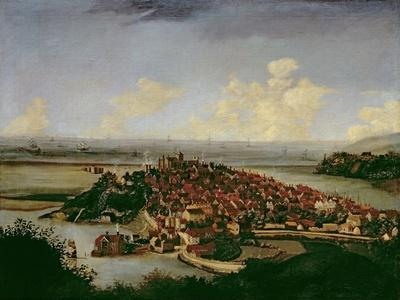 Extensive View of Rye