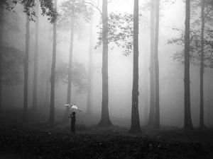 After the Rain by Hengki Lee