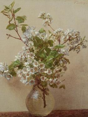 Pear Blossom, 1882 by Henri Fantin-Latour