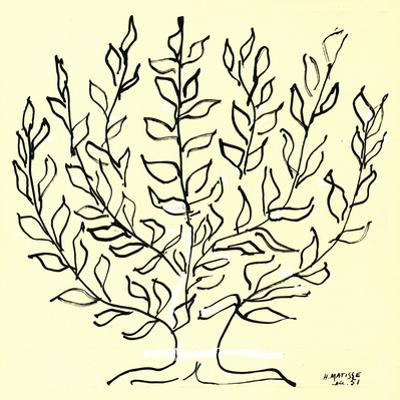 The Bush (Small) by Henri Matisse