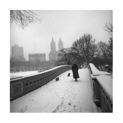 Bow Bridge Dogs, Central Park by Henri Silberman