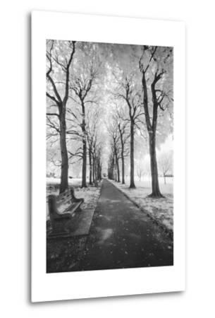Brooklyn Botanic Gardens - Infrared Garden Walkway by Henri Silberman