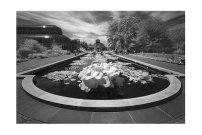 Brooklyn Botanic Gardens Lily Ponds - Infrared Garden Landscape by Henri Silberman