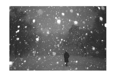 Brooklyn Evening Snowstorm by Henri Silberman