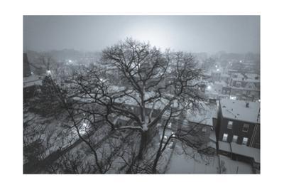 Brooklyn Snowy Evening Blue by Henri Silberman
