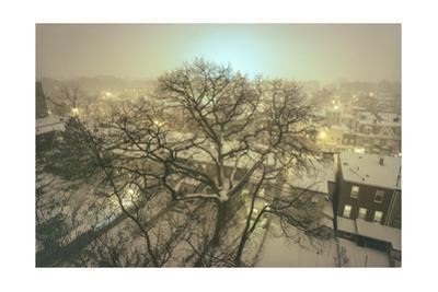 Brooklyn Snowy Evening by Henri Silberman