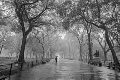 Central Park Poet's Walk - New York City Landmarks by Henri Silberman