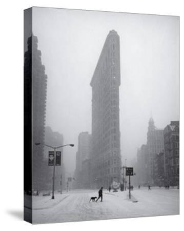 Flatiron Building Blizzard Dog Walker