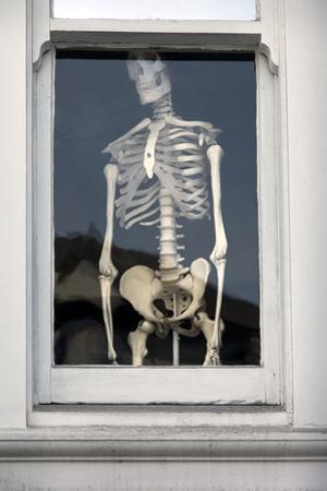 Human Skeleton in Window (Chiropractic Practice Display) by Henri Silberman