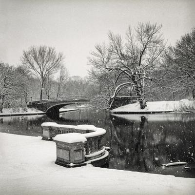Lullwater Bridge Snow, Prospect Park by Henri Silberman